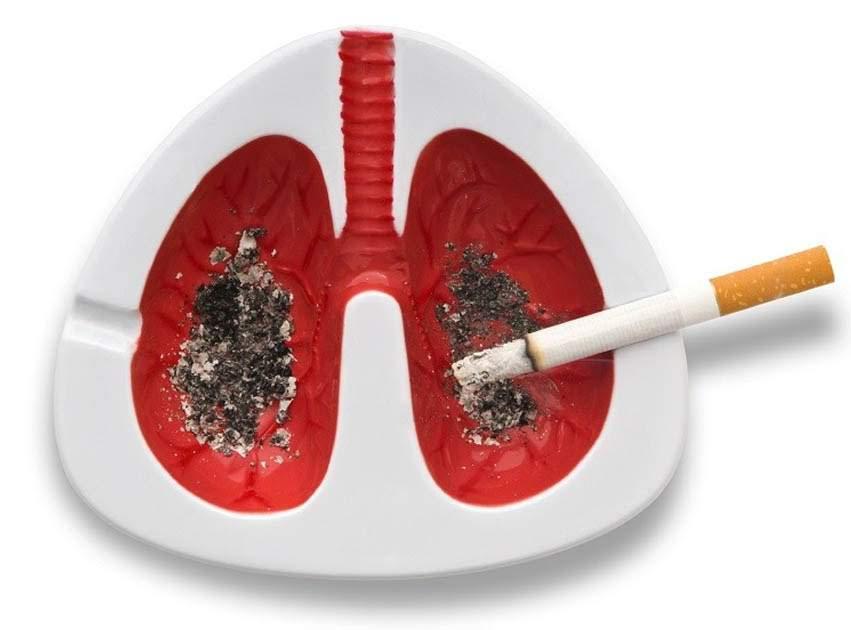 Câncer de Pulmão e o Cigarro